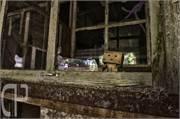 Alte Papierfabrik Danbo Urban Exploration