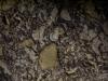 Unter Tage - Unsere Erde - Höhlensystem - Urbex - Urban Exploration